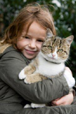 Infants, Toddlers and Kittens - Pet experts recommend that young kittens are not appropriate for children under age five.